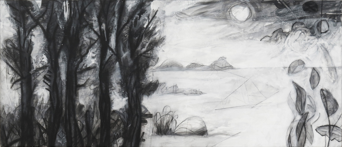 Terra Incognita (Colorless) No. 9, charcoal and gesso on panel, 18 x 42 (46 x 107 cm)